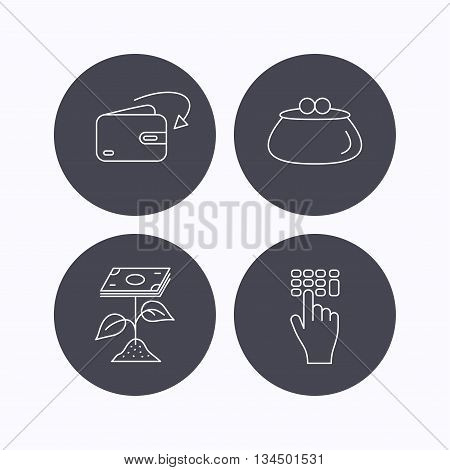 Cash money, profit and wallet icons. Receive money, enter code linear sign. Flat icons in circle buttons on white background. Vector