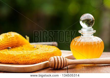 Honeycomb And Honey