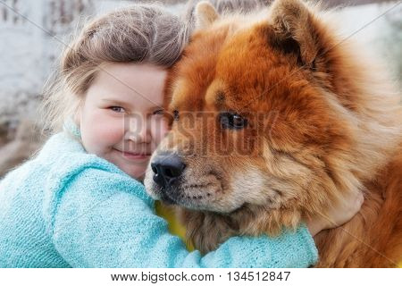 friendship. girl and dog chow-chow