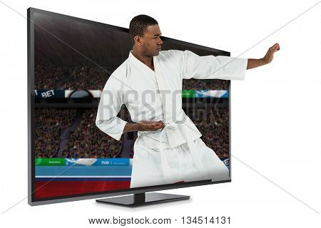 Fighter performing karate stance against composite image of playing field with supporter