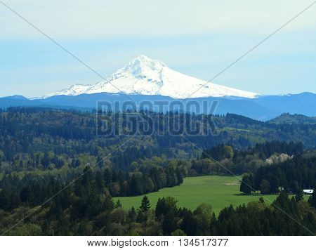 Mt. Hood Oregon in the Sandy River Valley,