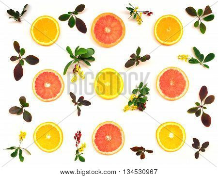 Citrus And Barberry Pattern