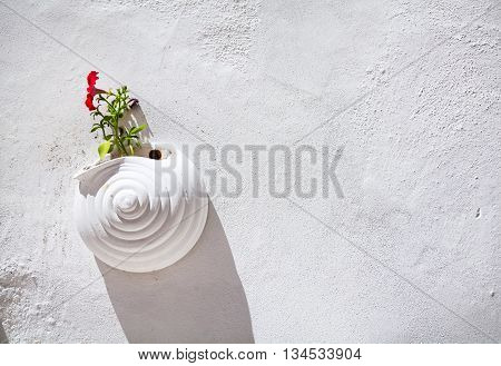 Flower Pot On The Wall