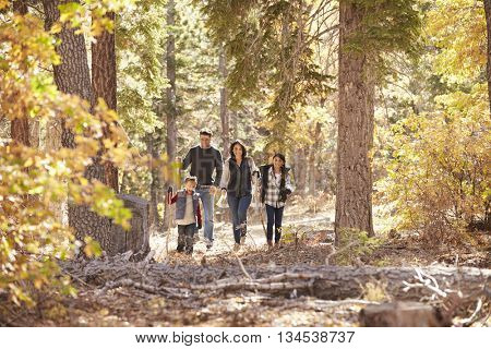 Hispanic family of four walking together in a forest