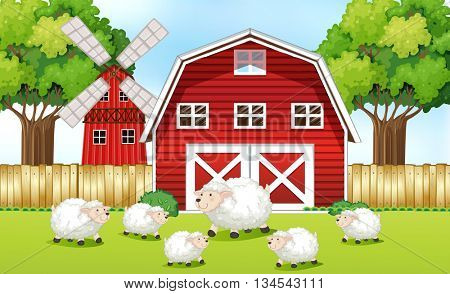 Sheeps in the farm with red barns illustration