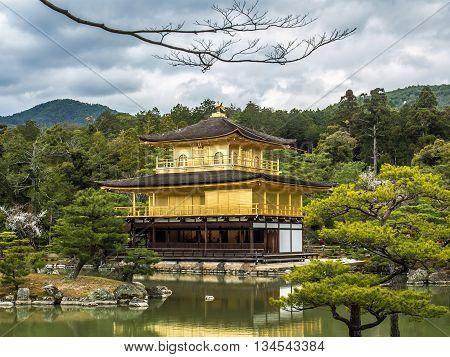 Kinkakuji Temple (golden Pavilion) In Japan.
