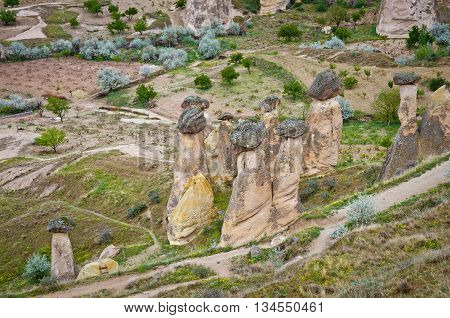 Rock-mushrooms spectacular landscape of fairy chimneys carved in volcanic tuff by erosion. Cappadocia Turkey