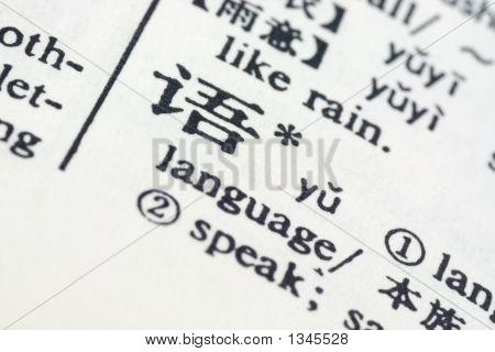 Lengua escrita en chino