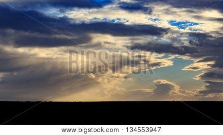 Cloudy Day - Addo Landscape