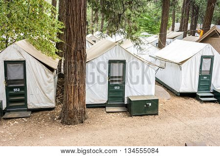 Tent Accommodation In Yosemite National Park.