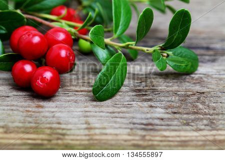 Fresh Cowberries with some leaves on wooden background