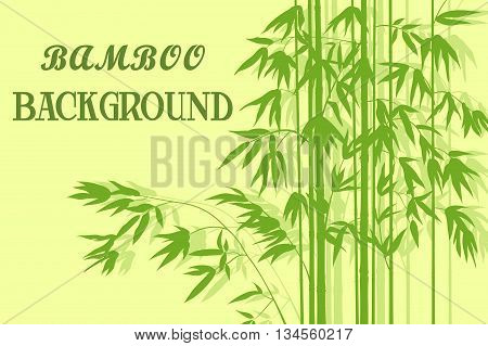 Bamboo Stems with Leaves Green Silhouettes on Yellow Background. Vector