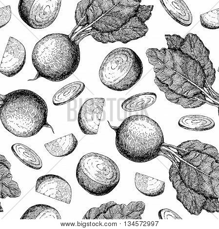 Beetroot hand drawn vector seamless pattern. Vegetable engraved style illustration. Isolated Beetroot. Detailed vegetarian food drawing. Farm market product.