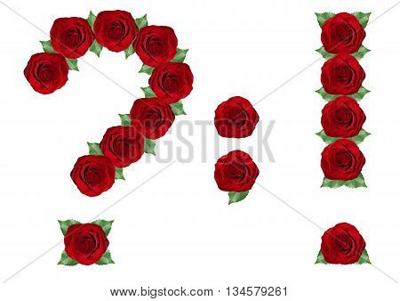 Punctuation Marks  Made From Red Roses And Green Leaves