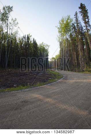 Dirt road that is winding through a forest in Saskatchewan Canada