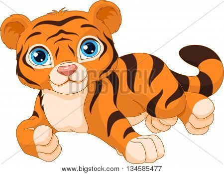Tiger cub lies on a white background