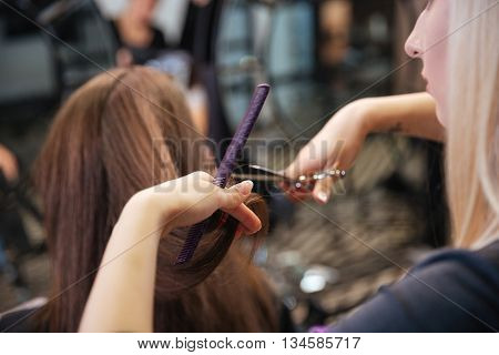 Beautiful hairdresser doing hairstyle to her client standing at a professional hairdressing salon