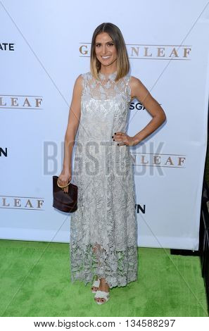 LOS ANGELES - JUN 15:  Kristin Erickson at the Greenleaf OWN Series Premiere at the The Lot on June 15, 2016 in West Hollywood, CA