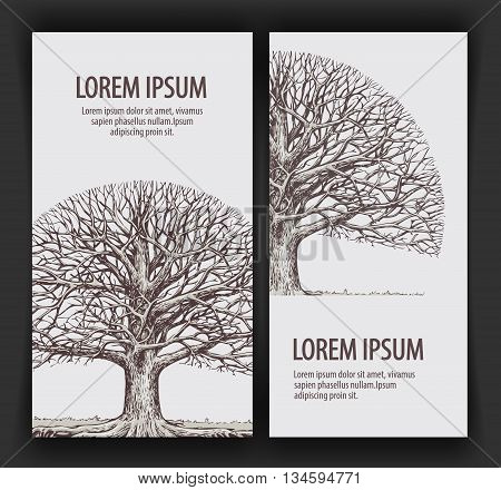 Tree without leaves. Nature or Ecology. Hand-drawn vector illustration