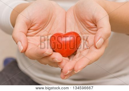 Woman hands holding a small red heart. Love. Happiness. Care. Healthcare. Valentine's day.
