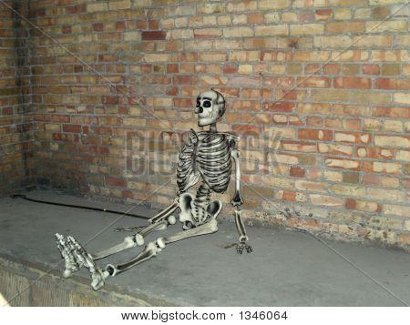 Skeleton Resting