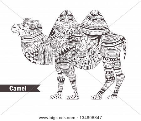 Camel. coloring book for adult, antistress coloring pages. Hand drawn vector isolated illustration on white background. Henna mehendi, tattoo sketch