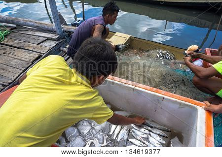 Labuan,Malaysia-June 16,2016:A group of local fishermen distribute the fish,after fishing with the net, the traditional way of fishing at the small fishing at Labuan tropical island,Malaysia.