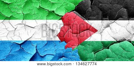 Sierra Leone flag with Palestine flag on a grunge cracked wall