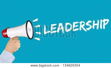Leadership Leading Success Successful Growth Finances Business Concept Megaphone