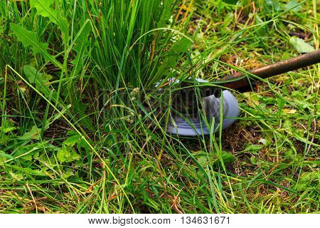 Mowing weeds in garden to petrol trimmer close-up