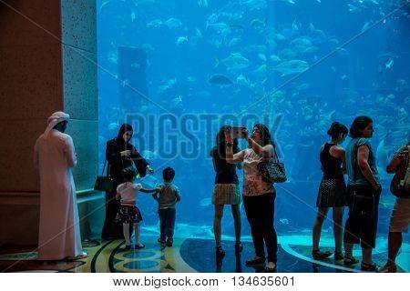 Dubai - AUGUST 7, 2014: Dubai Mall Aquarium on August 7 in Dubai