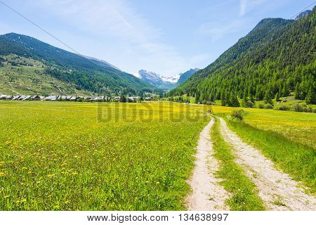 Dirt Country Road Crossing Flowery Meadows, Mountains And Forest In Scenic Alpine Landscape And Mood