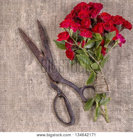 Grange Photo Bouquet Of Red Roses And Old Rusty Scissors