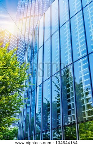 modern office building with green trees