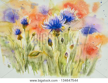 Red poppy flowers in background, blue cornflower on summer meadow.Picture created with watercolors.