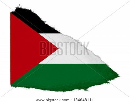 Flag Of Palestine Torn Paper Scrap Isolated On White Background