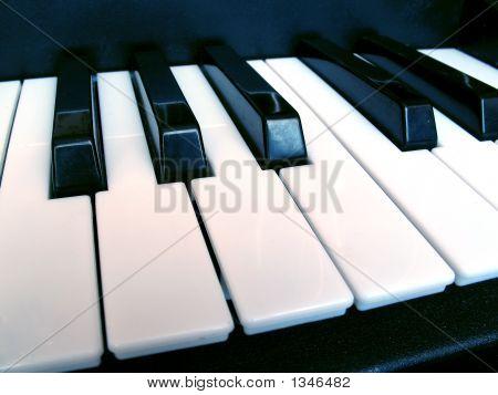 Piano Music Keys Isolated