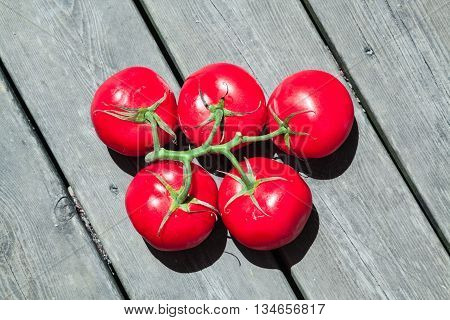 Olympic Tomatoes