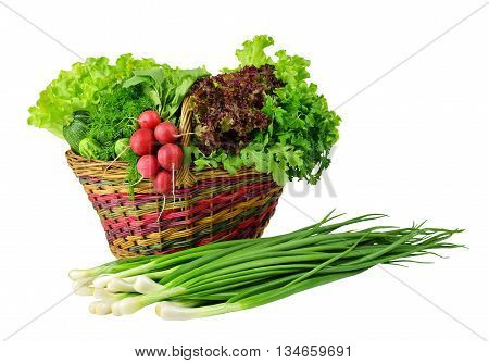 Old wicker basket and spring crop : lettuce parsleydill onions radishes zucchini arugula cucumber. Vitamins. Diet. Healthy eating. Vegetarianism. Agriculture. / Isolation on a white background without shadows /. Rustic style.