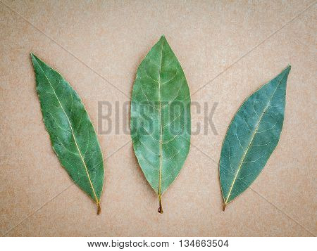 Dried Bay Leaf On The Brown Background, 3 Bay Leaves Background. Bay Laurel On Brown Background.