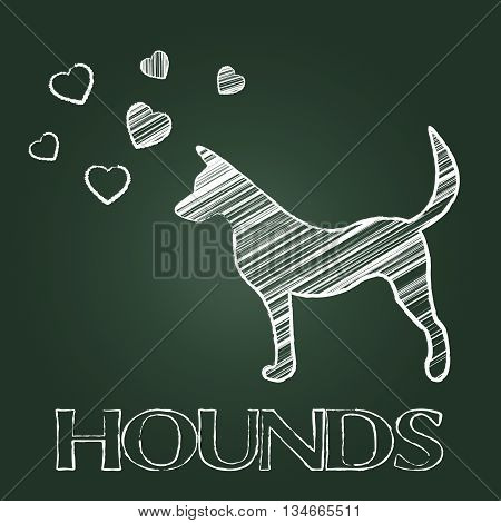 Hound Dog Indicates Dogs Canines And Hounds