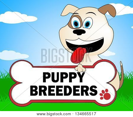 Puppy Breeders Shows Husbandry Canines And Pedigree