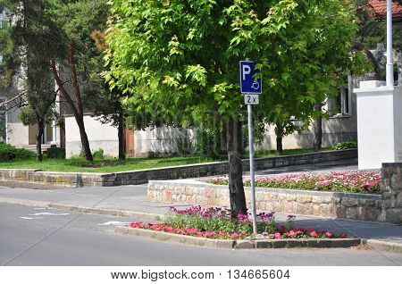 Disabled parking place and sign with flowers