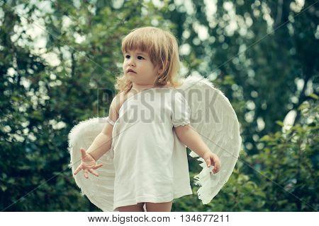 Small Boy In Angel Wings