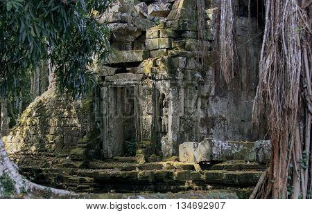 Ancient Ta Prohm Temple in Angkor Wat, Cambodia