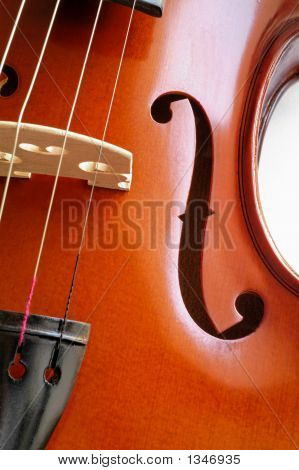 Musical Instruments: Violin Closeup Showing The Bridge (15)