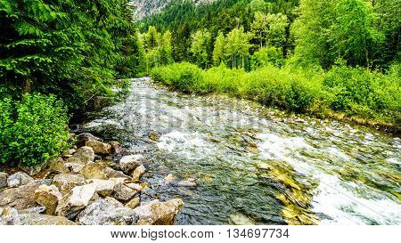 Cayoosh Creek at the Cottonwood Campside along the Duffy Lake Road near Lillooet in British Columbia
