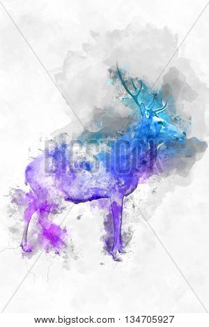 Colorful artistic watercolor of a wild buck with branched antlers with a splash effect overlay of magenta, purple and blue paint , profile view
