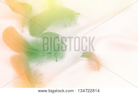 feathers on smooth silk fabric wedding background