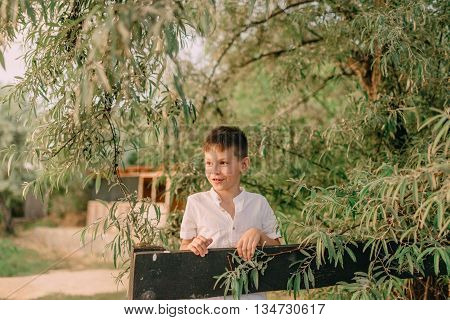 Camping under the trees at the wooden fence a little boy playing with a frog